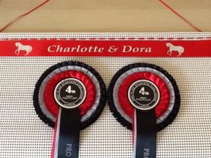 rosette holder, rosette display, rosette frame , ideas for rosettes