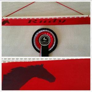 rosette holder, rosette holders, horse show rosette display, ideas for horse show rosettes, pony club rosettes