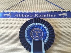 display rosettes, displaying rosettes, display dog show rosettes, dog show rosettes