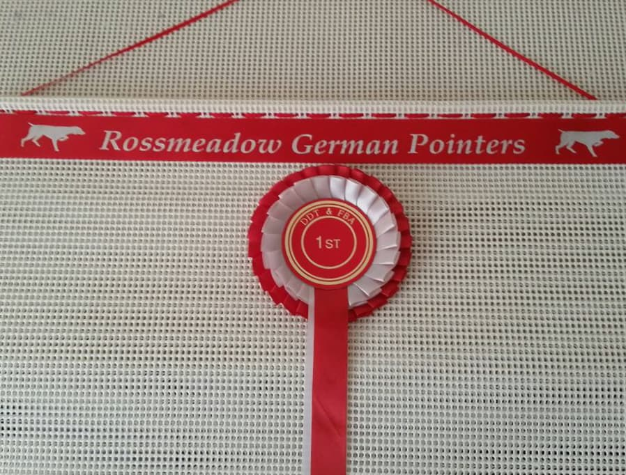 rosette holder, dog show rosette holder, rosette holders
