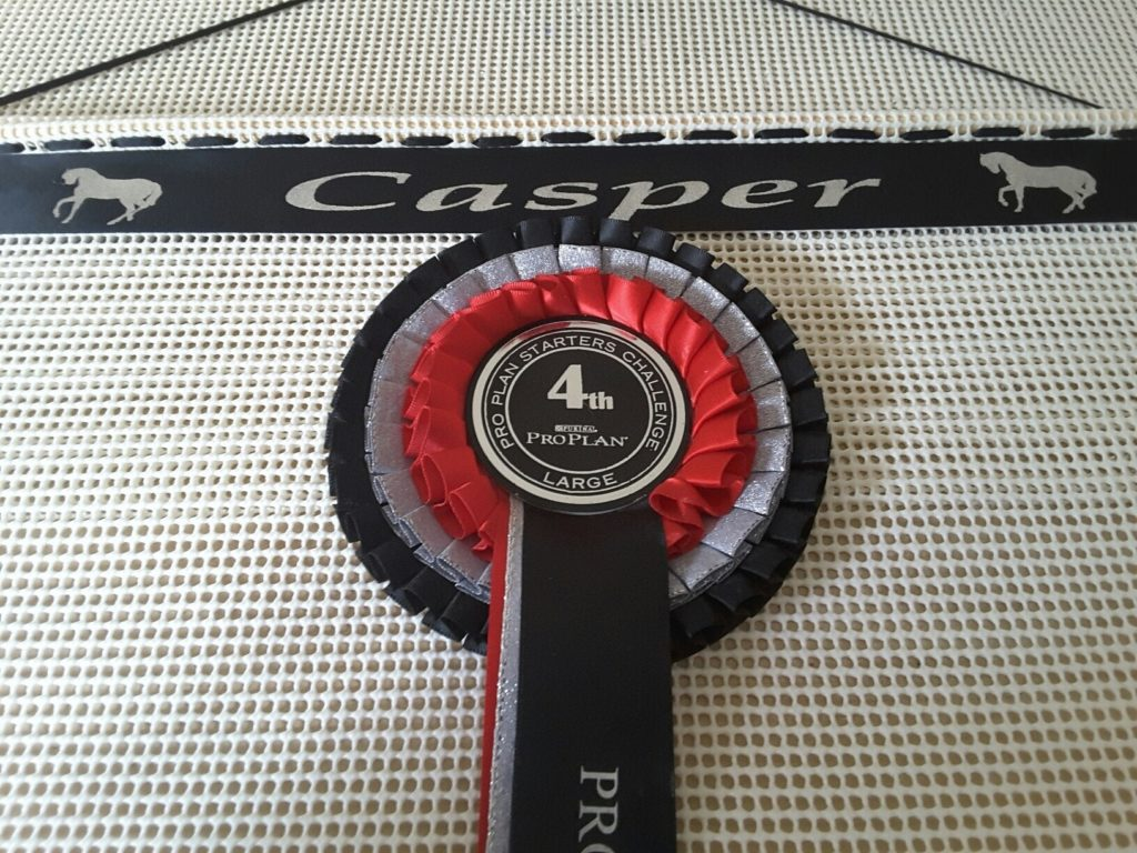 Rosette holder, rosette display, horse show rosette ideas, rosette board