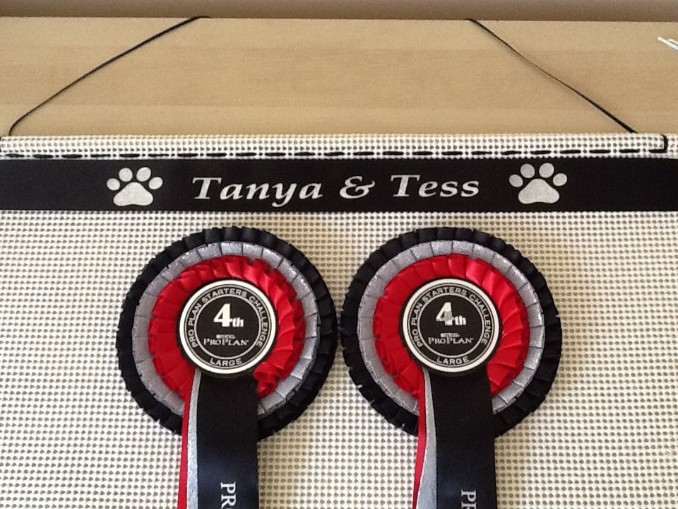 rosette board For Dog Show or Horse show rosettes