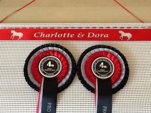 rosettes, show rosettes, , horse show rosettes,horse Rosette Holder