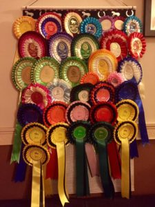 ideas for displaying rosettes, rosette display ideas, Rosettes display