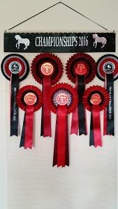 winning rosettes, rosette holder, ideas for displaying rosettes, rosette display, horse show ribbons