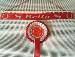 Horse Riding Rosettes, how to display horse riding rosettes, ideas for horse riding rosettes