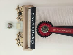 Trophy Shelf Rosette Display Holder