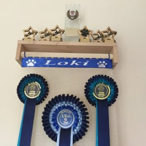 Trophy Shelf Rosette Holder